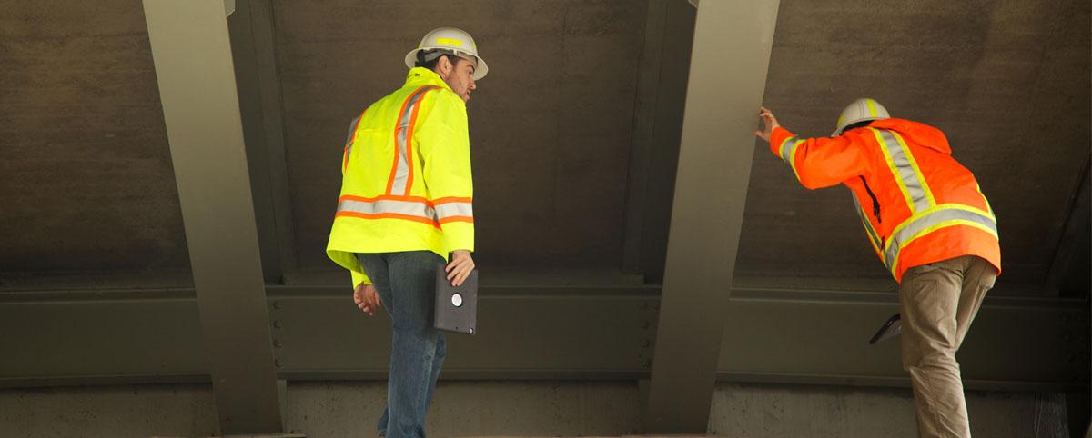 Pillar Bridge Inspectors
